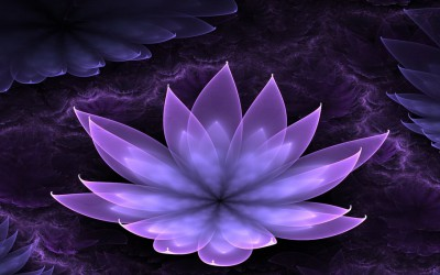 De lotusbloem als symbool
